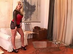 Fantastic blonde Krystal Steal loves rough doggy