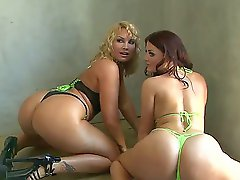 Superb babes Flower Tucci and Sophie Dee are enjoying a great lesbian softcore